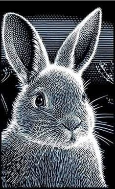 For Arts Sake | Print maker : Scraperfoil Art ~ bunny