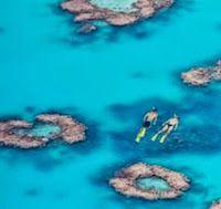 Australia Dive Vacation - Heron Island | Luxury Vacation Guide