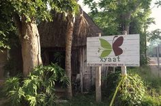 Community-based tourism is changing the face of Cancun, Mexico