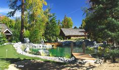 Swimpond Landscape Design Inc. no chemicals to purify the water and you can have a swimming pool that looks like a natural pond! Swimming Pool Pond, Natural Swimming Ponds, Natural Pond, Natural Garden, Dream Pools, Cool Pools, Pool Landscaping, The Ranch, Water Features