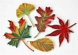 how to quill a autumn leaf - Yahoo Image Search Results