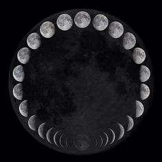 One complete lunar cycle- This is a project I've always wanted to do.. get a shot of the moon during each stage of its cycle :-)