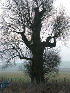 Silbury Hill - Wiltshire, England