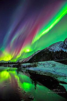 Aurora Borealis Alaska The Northern Lights