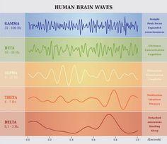 brain wave chart
