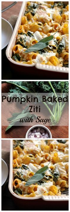 Cheesy pumpkin baked ziti filled with hints of sage and loads of comfort.