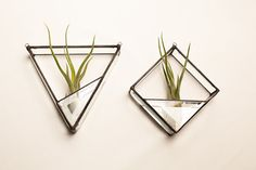 Square Geometric Stained Glass Air Plant by amyburgessjewelry