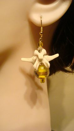 Real Animal Bone Jewelry Turtle Bones Earrings by OutofDoors