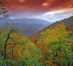 landscapelifescape:    Great Smokey Mountain National Park, Tennessee, USA  Under the Autumn Storm (by Landscape Images by David Shield)