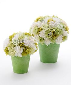 <Nicolai Bergman> Preserved Flower Arrangement (white × Green): Mitsukoshi-Isetan online store