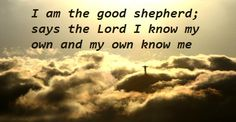 Daily Bible Readings Tuesday 7th July 2015