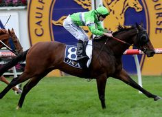 Group 1 winner Precious Gem (Aus) (Econsul {NZ}--Gem of Gems, {Aus}, by Peintre Celebre) has been retired from racing to begin a new chapter as a broodmare. The Henry Dwyer-trained 6-year-old ran her final race …