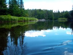 Au Sable River - Michigan. I believe I took this picture between Luzerne and Mio.