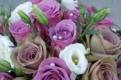 Dutch, Roses, Cool Stuff, Water, Flowers, Plants, Gripe Water, Dutch Language, Pink