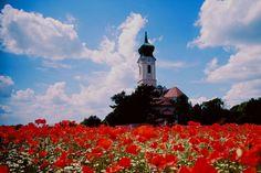 Mistelbach an der Zaya Landscape Pictures