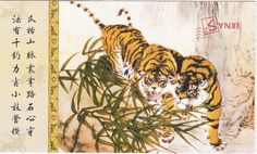1pcs China Meticulous Tiger Painting Calligraphy Postcard Tiger Couple #29