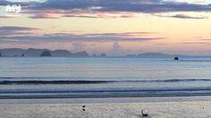 Coromandel Best Beaches, New Zealand Auckland, New Zealand, Beaches, Waves, Mountains, World, Youtube, Outdoor, The World