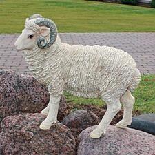 Horned Dorset Sheep Statue