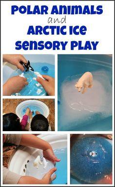 Polar animals and Arctic ice - teaching kids about Arctic animals and Arctic ice through sensory play || Gift of Curiosity