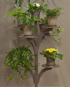 Plant Stand. I might give this idea to my dad, who could weld a better one!