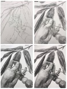 Pencil Art, Pencil Drawings, High School Art, Art Programs, Technical Drawing, Step By Step Drawing, Pictures To Draw, Learn To Draw, Illustrations