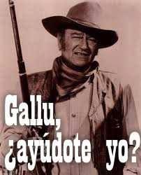 Ayúdote yo Gallu?