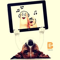 """""""No #siempre podemos #elegir la #música que la #vida nos pone, pero podemos #elegir cómo la #bailamos""""    #happyweekend http://www.elsalvadorebooks.com/"""