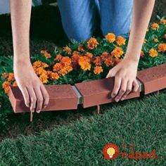 Choose one of these garden edging ideas to make a statement or pick something subtle and quaint. You can choose a garden edging perfectly suited to you. Landscaping With Rocks, Outdoor Landscaping, Front Yard Landscaping, Landscaping Tips, Brick Edging, Lawn Edging, Brick Landscape Edging, Concrete Edging, Brick Walkway