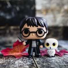 And my favorite Funko Pop with his sidekick. #harry #harrypotter #hedwig #hogwarts #gryffindor #potterhead