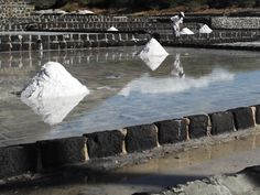 Salt ready to be collected.