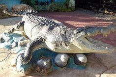 http://www.sunstar.com.ph/sites/default/files/styles/large/public/field/image/article/davao-crocodile-park.jpg_0.jpg?itok=lZ-e5HgM