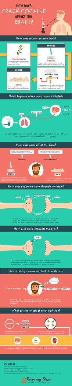 Infographic Of The Day: How Does Crack Cocaine Affect The Brain?