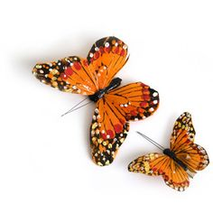Image of Monarch Butterfly Clips