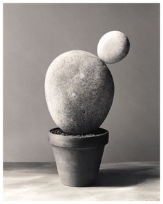 Photographer Chema Madoz has been turning everyday objects into open-ended questions since the Conceptual Photography, Photography Awards, Creative Photography, Fine Art Photography, Garden Whimsy, Garden Art, Poesia Visual, Pottery Painting Designs, Sculpture