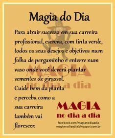 Magia no Dia a Dia: Magia do Dia: sucesso profissional
