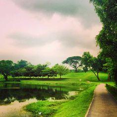 MacRitchie Reservoir #park in #singapore