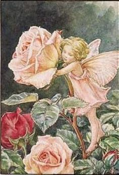 The Rose Fairy, by Mary Cecily Barker, a younger contemporary of Miss Potter