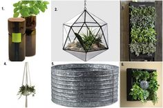6 Terrariums, Tubs And Vertical Gardens For The Ambitious Indoor Farmer | Food Republic