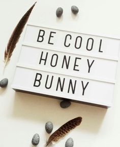 be cool honey bunny quote Light Box Quotes Funny, Cinema Light Box Quotes, Cinema Box, Marquee Sign, Marquee Lights, Lightbox Letters, Lightbox Quotes, Bunny Quotes, Lead Boxes