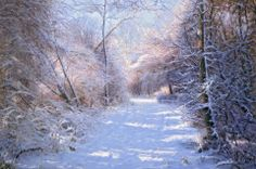 Winter landscape by Ahmad Haraji