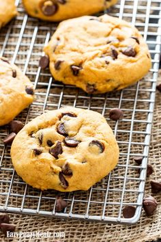 This big batch recipe for Super Soft Pumpkin Chocolate Chip Cookies is the perfect fall treat! These pillowy soft, oh so delicious, and uber flavorful pumpkin chocolate chip cookies are exactly what I needed for Fall. I have been in a bit of a Fall funk! I spent a little time in Arizona, and it...Read More »