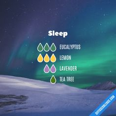 Blend Recipe: 3 drops Eucalyptus, 3 drops Lemon, 2 drops Lavender, 1 drop Tea Tree