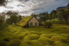 The old peat church at Hof, Iceland Photo by: Iceland Wallpaper, Types Of Renewable Energy, Iceland Photos, Iceland Image, Kirchen, Solar Energy, Beautiful Places, Peaceful Places, Backyard