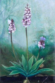 I painted the original artwork with eco paints on organic linen and sustainable wood. All my works are strictly CRUELTY FREE – they do not contain substances of animal origin such as bone or hide glue. No animal hair brushes were used.  #natureartprints #botanicalprints #natureart