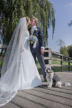 www.Trouwgeheimen.nl/trouwfotos-met-hond/ Wedding Dresses, Bride Dresses, Bridal Gowns, Weeding Dresses, Wedding Dressses, Bridal Dresses, Wedding Dress, Wedding Gowns, Gowns
