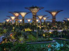 Los jardines de la bahía son una de las maravillas que nos esperan en Singapur