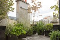 Préparer ses plantes d'été à passer l'hiver - Fiche pratique