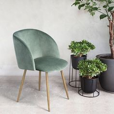 People Are Losing It Over This $43 Chair on Amazon via @MyDomaine