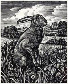 Art,howard,phipps,march,hare,rabbit-1f74e6bd55beda14eed5f8002cee62d8_h