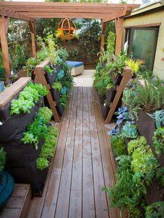 Potager vertical | Un jardin ou un potager vertical à l'intérieur ou à l'extérieur ...